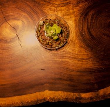 muebles-organicos